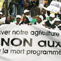 Le baiser de la mort de l�Europe � l�Afrique