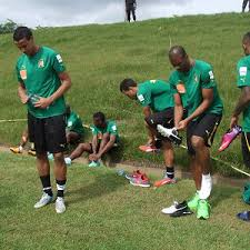 Eliminatoires Br�sil 2014: Le Cameroun r�cup�re les 3 points du match perdu contre le Togo